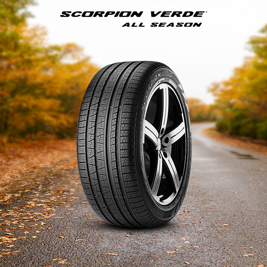 91489_scorpion_verde_all_season_cat_sfondo